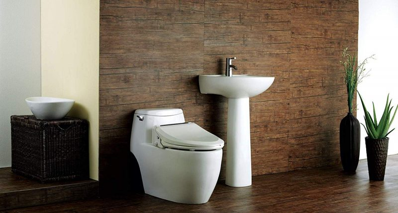 Miraculous Top 8 Best Bidet Toilet Seats On The Market 2019 Reviews Andrewgaddart Wooden Chair Designs For Living Room Andrewgaddartcom